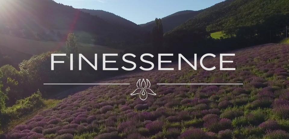 Finessence_logo_amb