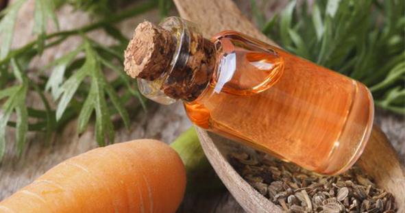 Řádná dávka vitamínů a betakarotenu?  Zkus Mrkvový olej!