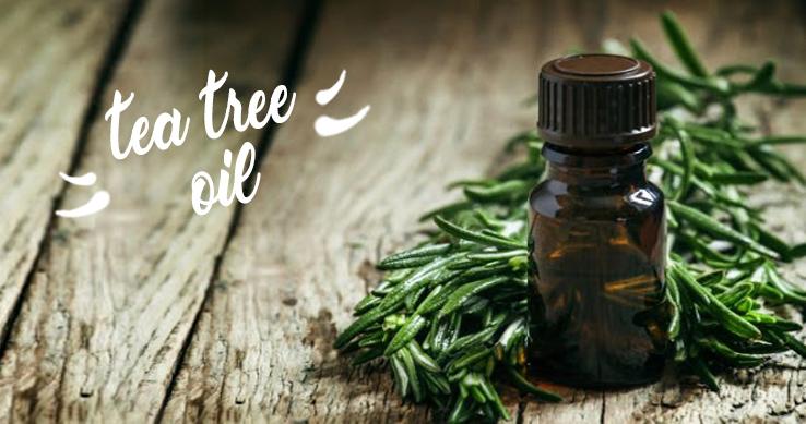 AUSTRALSKÝ ZÁZRAK JMÉNEM TEA TREE OIL
