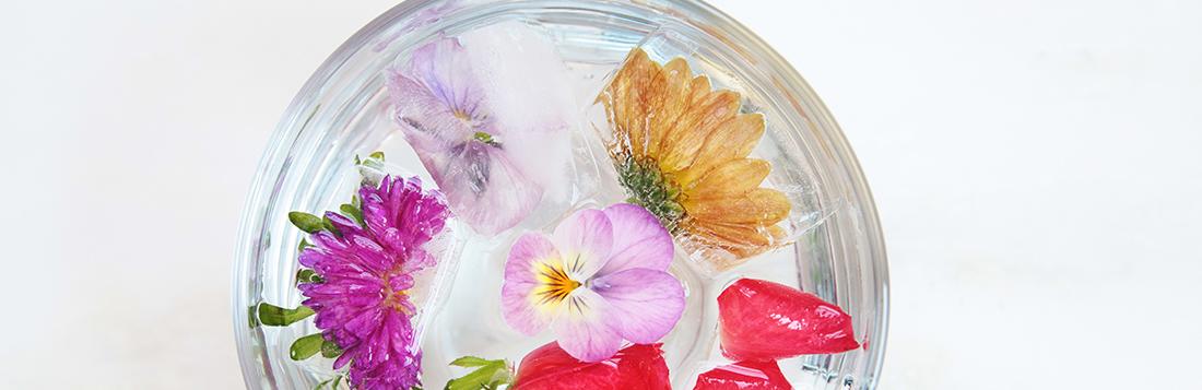 Flower-Water-7