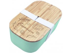 tropikalia lunch box l mintovy