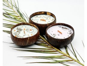 tropikalia prirodni sojova svicka v kokosove misce coconut dream