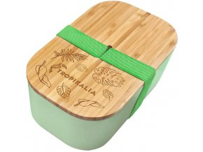 tropikalia lunch box l green