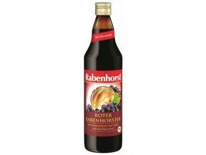 hrozno + zelezo rabenhorst