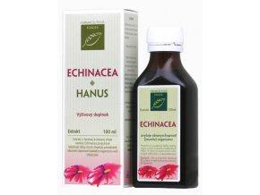 echinacea hanus