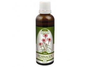 Echinacea - tinktúra z bylín T7