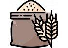 Pšeničné cestoviny