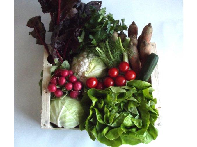 BIO RAW bedýnka zeleninová střední