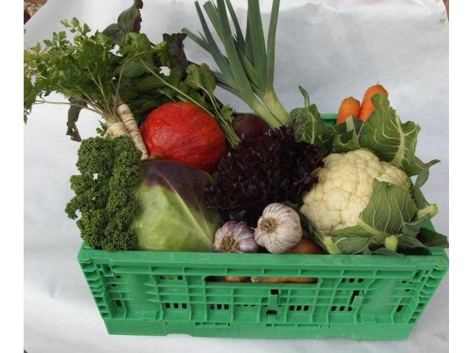 Bio bedýnka zeleninová rodinná