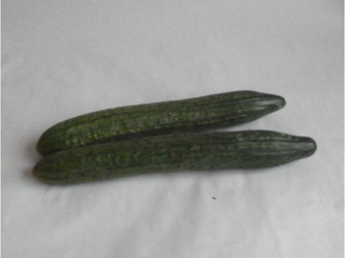 BIO okurka salátová