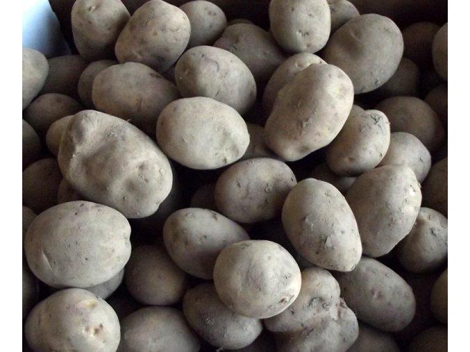 brambory žluté