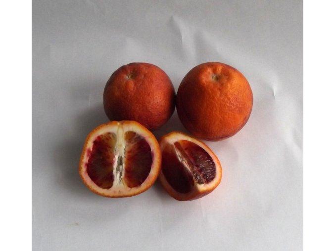 pomeranče krvavé Moro