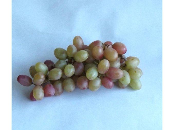 BIO víno hroznové růžové