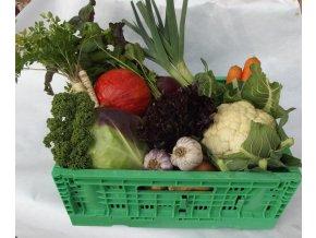 Bio bedýnka zeleninová malá