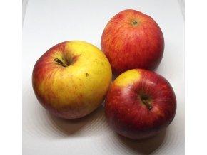 Bio jablka Ametyst 1 kg
