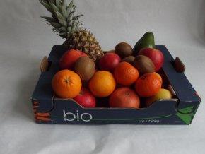 BIO bedýnka ovocná střední