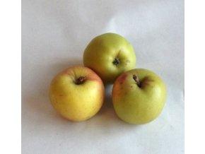 jablka Golden Delicius