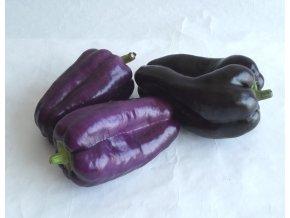 BIO paprika fialová