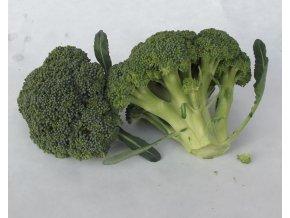 BIO brokolice