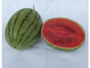 BIO meloun vodní mini  ks (cca 1,5 kg)