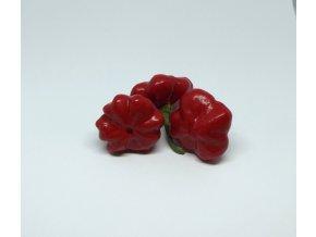 Bio papričky chilli  3 ks