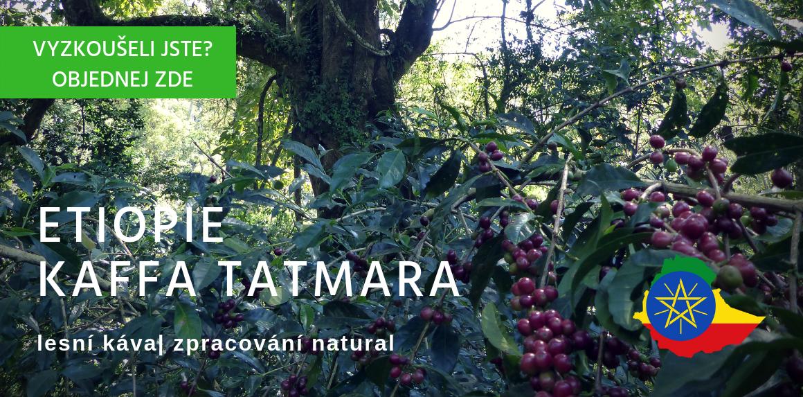 Etiopie Kaffa Tatmara káva