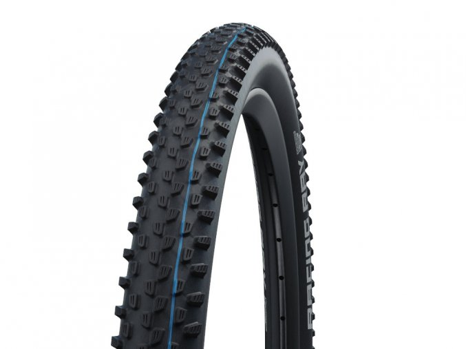 schwalbe tire racing ray 29 x 225 super ground addix speedgrip evo snakeskin tle 2021~2