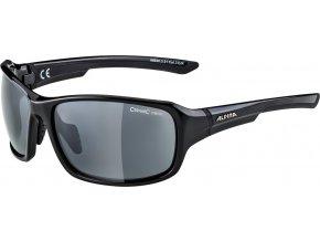 brýle Alpina Lyron