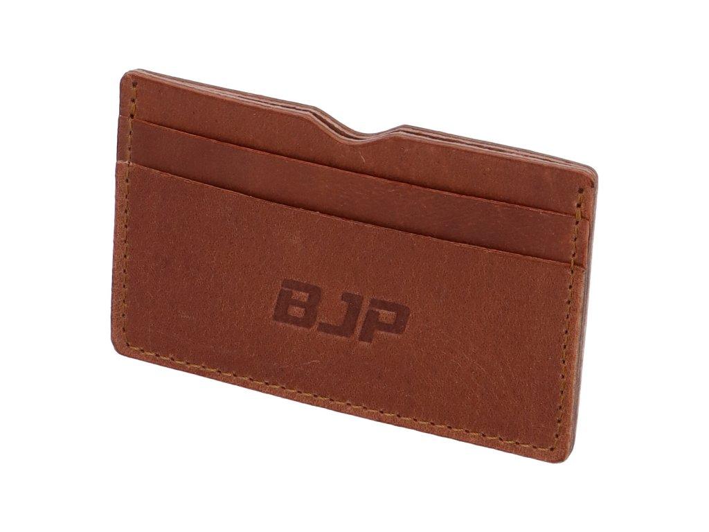 BJP penezenky 8
