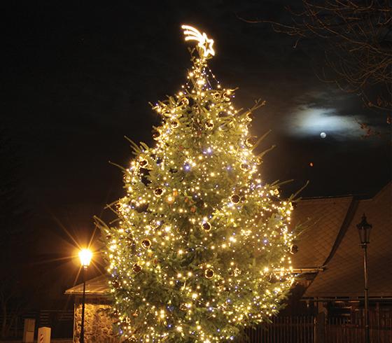 Svetelné reťaze na strom
