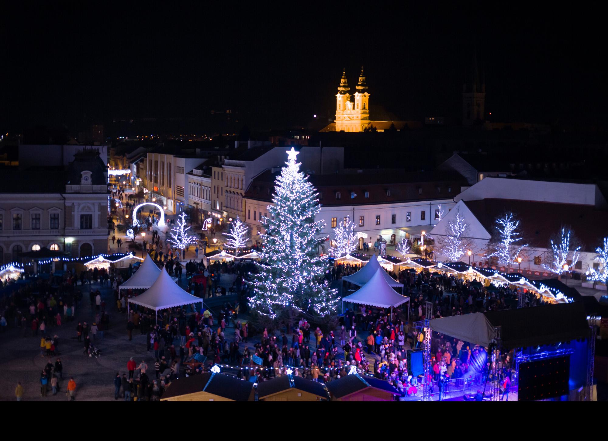 Stromy-Nitra-2019
