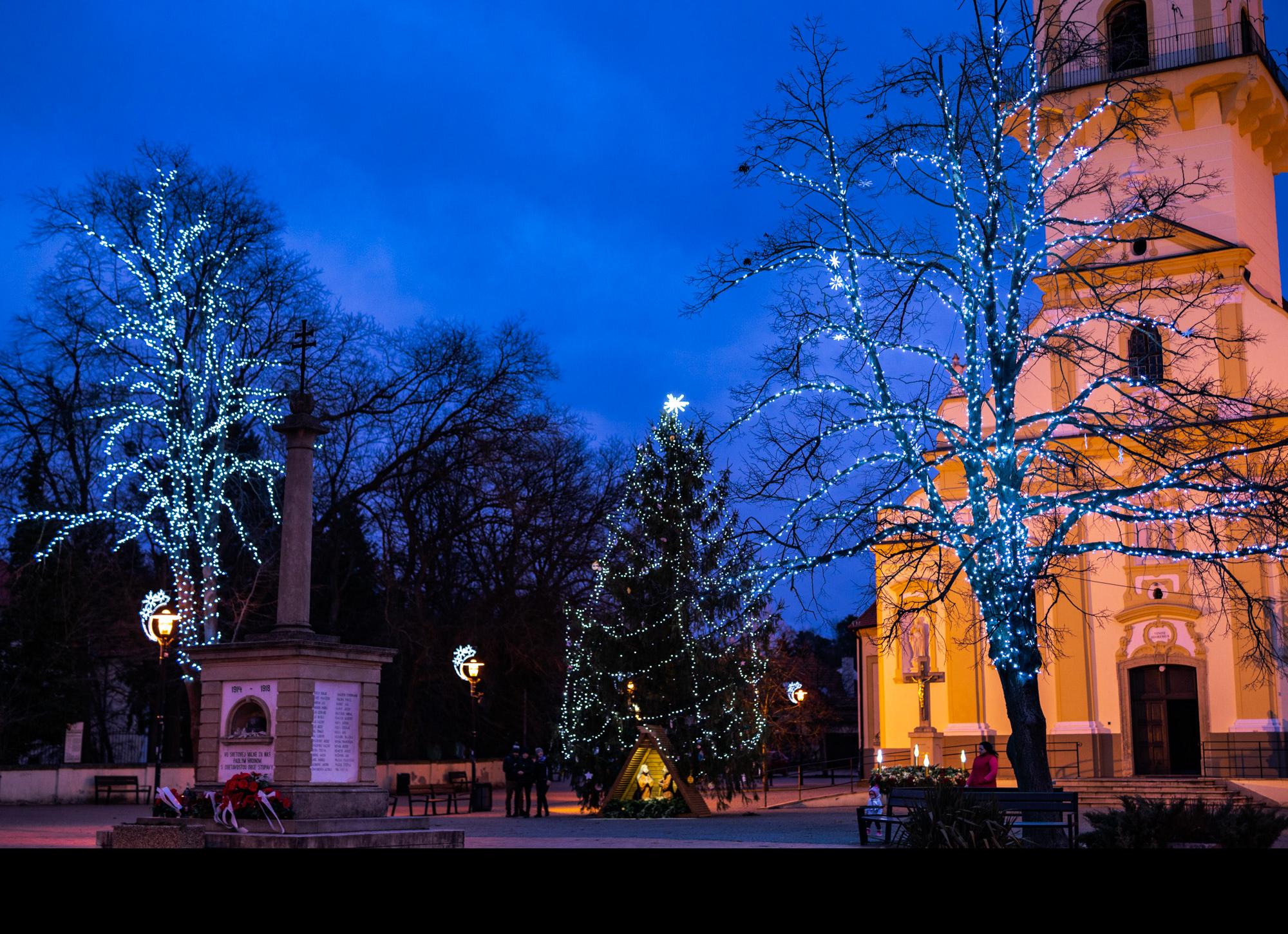 Stromy-Stupava-2019