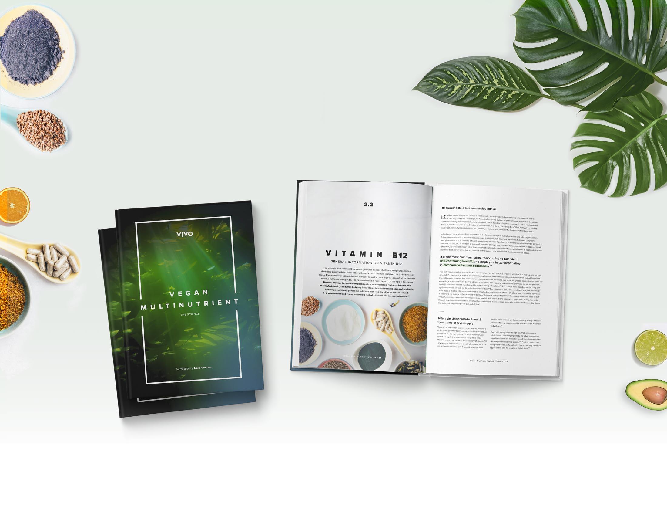 vmulti-overview-ebook-background