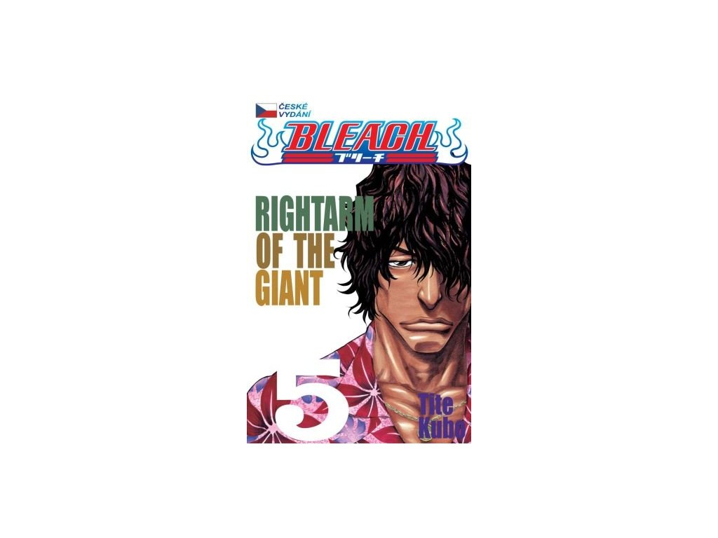 6323 bleach rightarm of the giant 5 dil