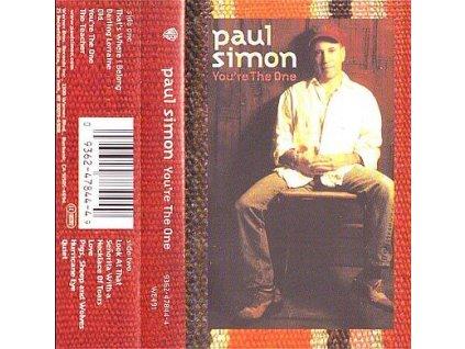 paul simon youre the one