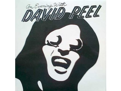 PEEL DAVID: An Evening With - LP / BAZAR