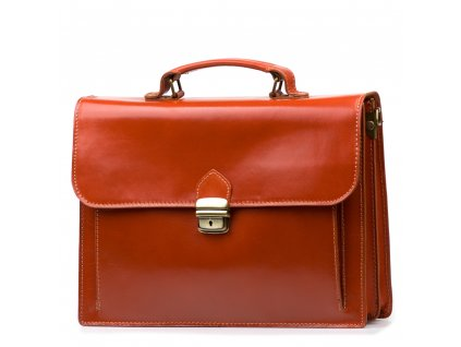 Kožená pracovní taška Alex koňakově hnědá