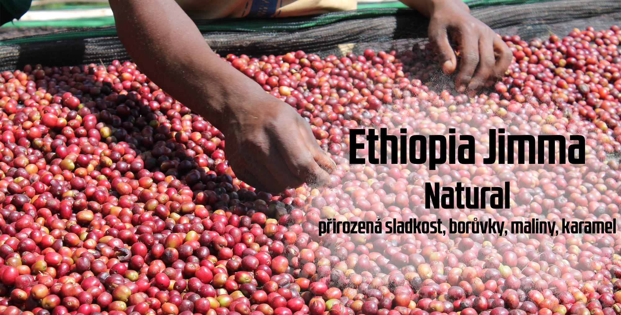 Ethiopia Jimma