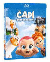 capidobro2d