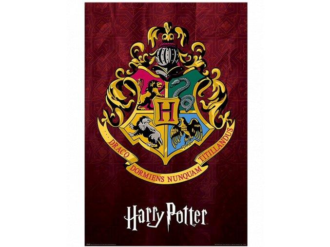 Plakát Harry Potter: Bradavická škola čar a kouzel (91,5 x 61 cm)