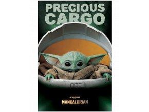 Plakát Star Wars - Mandalorian: Precious Cargo (91,5 x 61 cm)