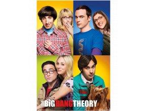 Plakát Big Bang Theory - Teorie velkého třesku: Hlavní páry (61 x 91,5 cm)