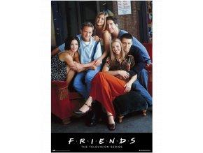 Plakát Přátelé / Friends: Hlavní hrdinové Joey, Rachel, Monica, Ross, Phoebe, Chandler (91,5 x 61 cm)