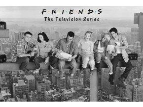 Plakát Přátelé: Hrdinové nad New Yorkem (91,5 x 61 cm)