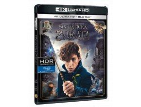 Fantastická zvířat a kde je najít (4k Ultra HD Blu-ray)