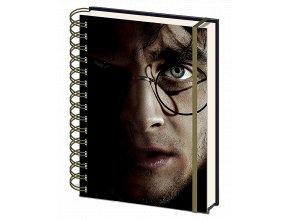 Zápisník Harry Potter: Harry a Voldemort 3D (A5, linkovaný, 3D vazba)