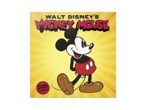 Nástěnný kalendář Disney: Mickey Mouse (rok 2020, 30x30/60 cm)