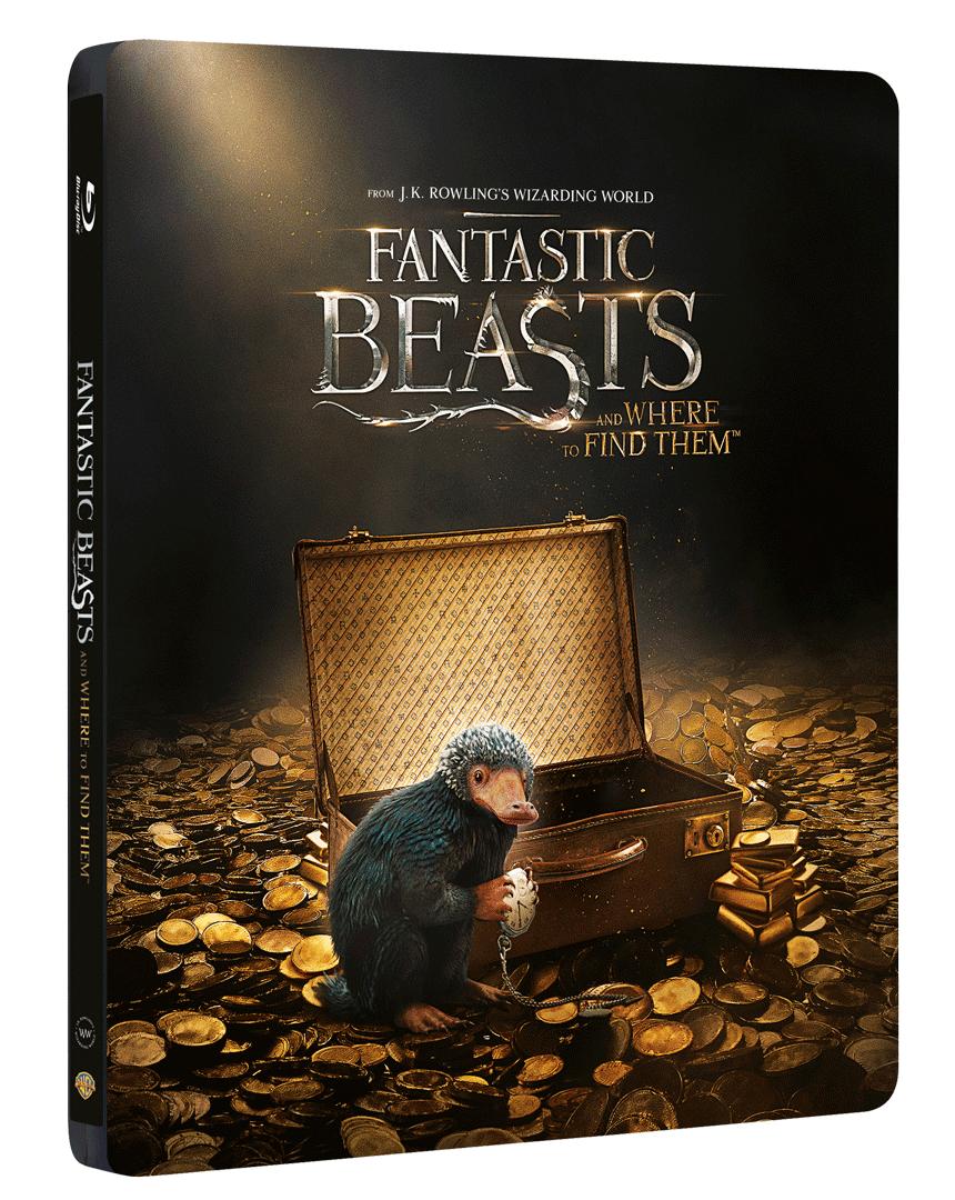 Fantastická zvířata a kde je najít (Steelbook, Blu-ray 3D + Blu-ray 2D)