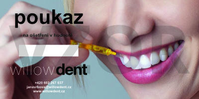 Ordinace zubní hygieny Willowdent Praha