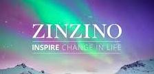 Logo Zinzino